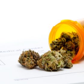 How to prescribe medicinal cannabis