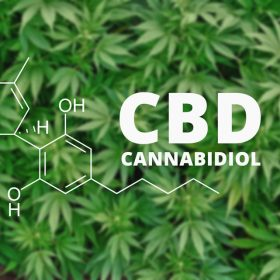 what is cbd cannabidiol