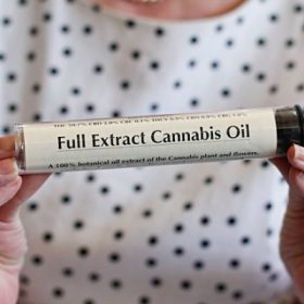 buy cannabis oil high CBD Low THC from eternal plants